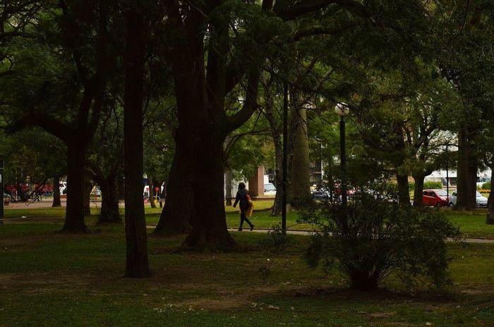 Autumn in my cities park Montevideo Park People Autumn First Eyeem Photo