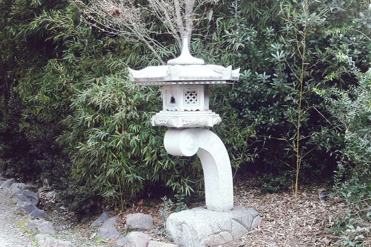 Japanese Garden Cerro San Cristóbal Jardin Japones Asian Culture Asian Art Asain Architechture Chile Santiago