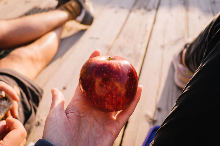 Israel Israel Human Hand Human Body Part Hand Food And Drink Food Real People Holding Healthy Eating People Freshness Fruit Day Wellbeing Lifestyles Body Part Close-up Leisure Activity Focus On Foreground Unrecognizable Person Outdoors Finger Human Limb