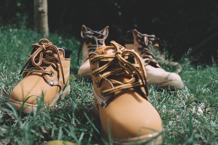 Hiking Boots On Grassy Field At Forest