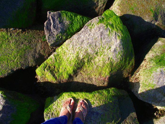 Rocks Green