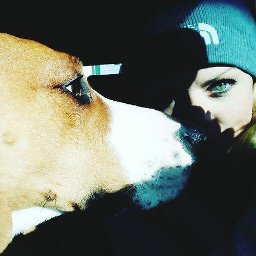 Dogs Of EyeEm Girls Best Friend <3 I Love My Dog Bruin