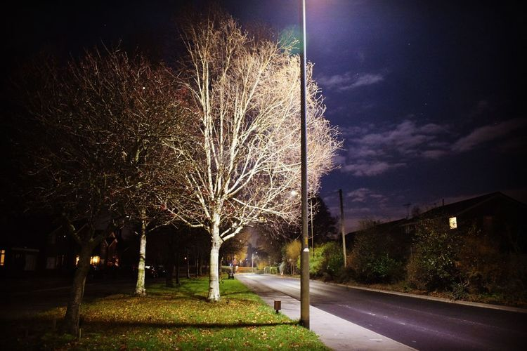 EyeEm Selects Nopeople Not Human Nightscape Night Nightphotography Nightphotography Night Nightscapephotography Nightscape Nightscapephotography Illuminated Tree Sky Long Exposure