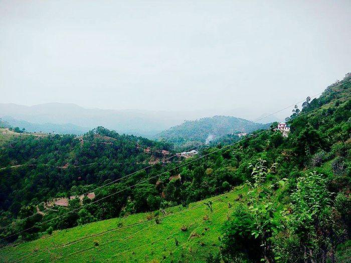 Hometown Hometown Scenery Solan Hills And Valleys Hill Country Greenery NaturesLap EyeEmNewHere