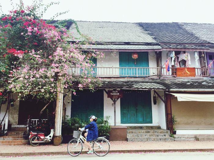 Bike Town Nature Oldtown Oldcity