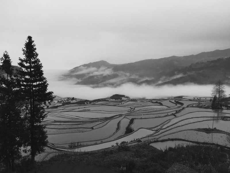 Misty Mountains  of Yuanyang Terraced Fields Yunnan