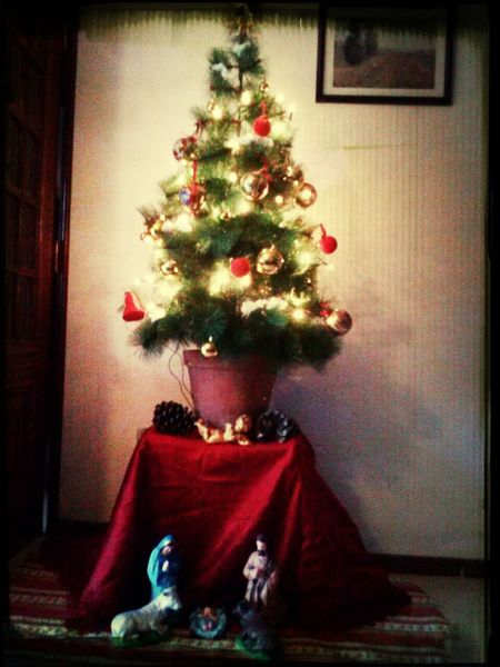 Merry chorstmas oh oh!!! Chirstmas Tree Chirstmas Check This Out Goodnight
