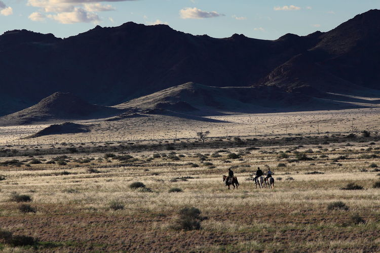 Riding horses in the Naukluft Park, Namibia Born To Be Free Freedom Highlands Highlands Of Namibia Idyllic Landscape Lifestyles Mountain Range Namibia Naukluft Physical Geography Riding Horses Rural Scene Tourism Tranquil Scene Travel Destinations Wide Plain Wideness
