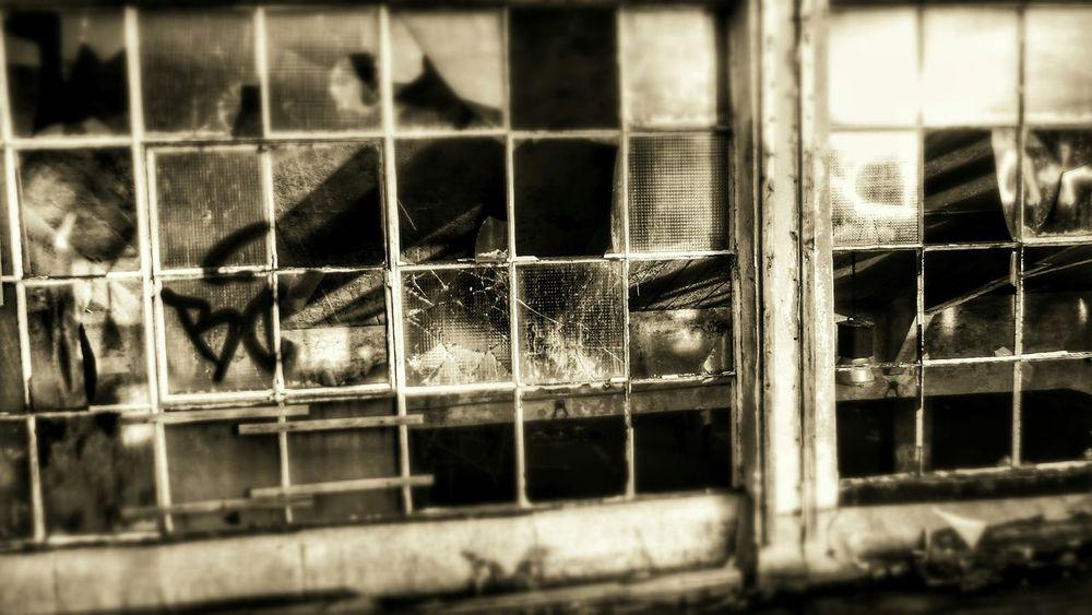 Düsseldorf Lostplace Factory Brokenwindows Germany Sony Cybershot Eye4photography  Vandalism Out Of Order Abandoned Places