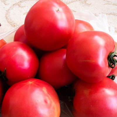 Tarla Domates Dogal ve Naturel Hormonsuz %100 Organik
