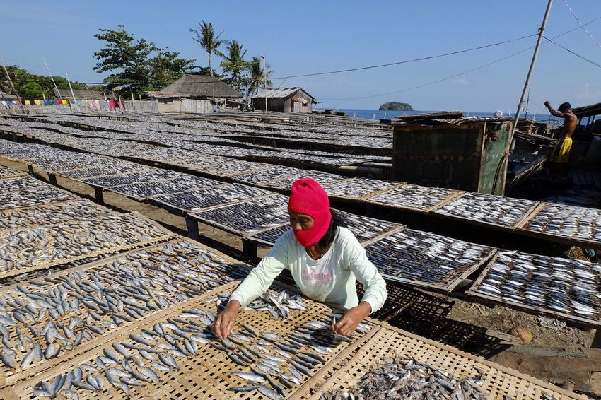 woman arranging dried fish for export and daily consumption Roxas City Architecture Building Exterior Built Structure Clothing Construction Industry Day Full Length Hat Headscarf Nature One Person Outdoors Rail Transportation Railroad Track Real People Sky Sunlight Track Transportation