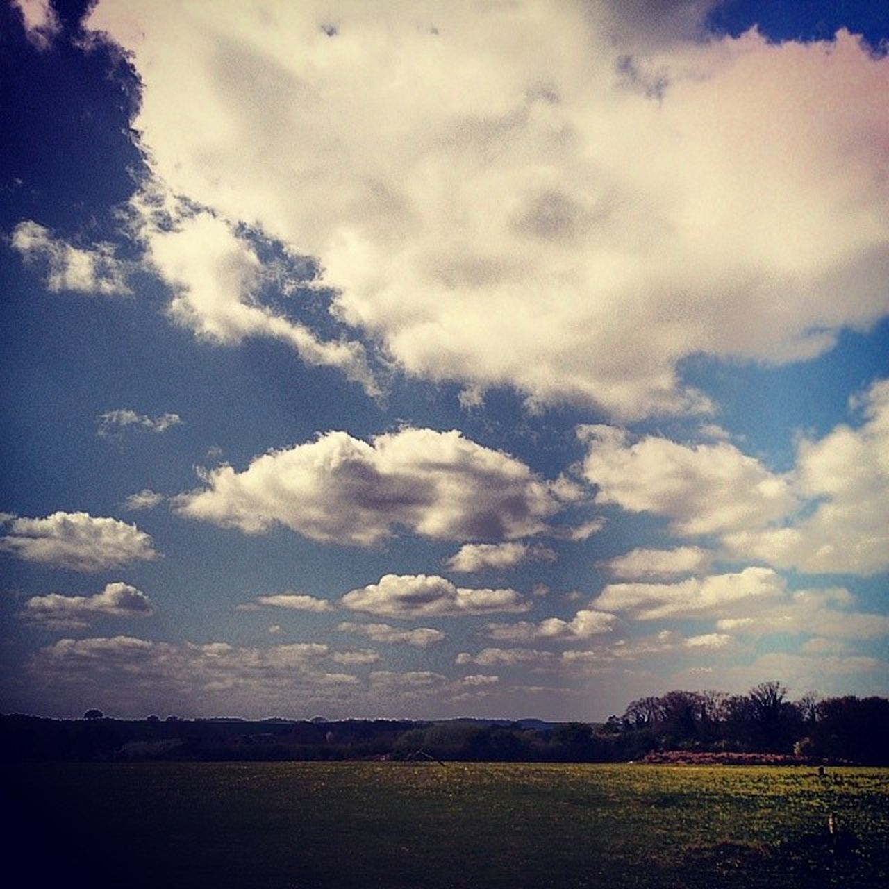 sky, nature, cloud - sky, field, tranquility, landscape, beauty in nature, scenics, tranquil scene, no people, outdoors, day, rural scene, tree