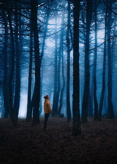 Those conditions.. Landscape Fog Turkey Fujifilm Fujifilm XH1 EyeEmNewHere Forest Tree Land One Person Tree Trunk Full Length Trunk Plant WoodLand Nature Walking Adult Standing Beauty In Nature Lifestyles Night Leisure Activity Women Outdoors