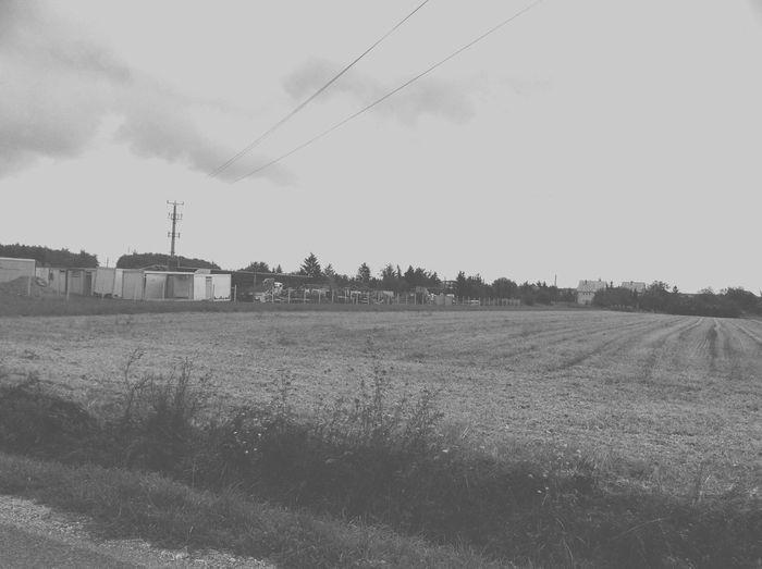 Puszta Empty Photo Landscape