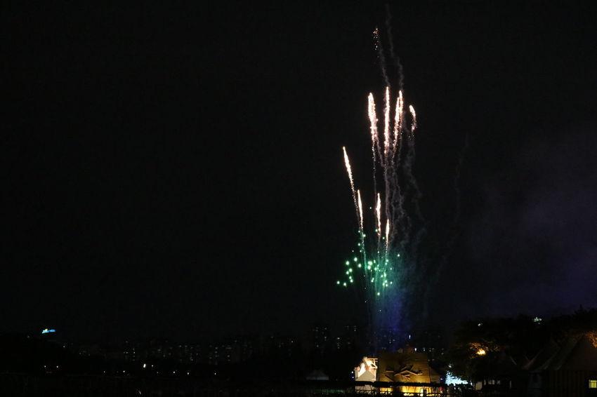 Exploding Firework Illuminated Night Sky
