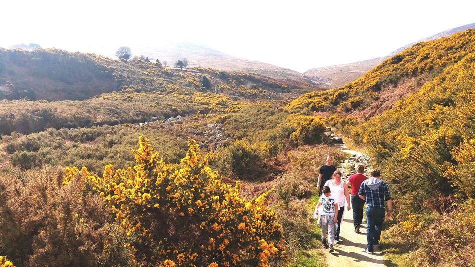 Mountain Leisure Activity Tourist Beauty In Nature Plant Growth Mountain Range Scenics Hiking Nature Walking Ireland🍀 Irelanddaily Ireland EyeEm Best Shots PhonePhotography