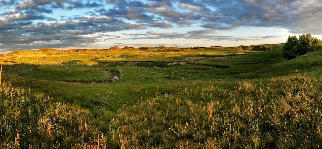 The plains of North Dakota... North Dakota North Dakota Badlands Plains Sunset Landscape Check This Out Beautiful Rich Colors Beauty In Nature Creation Original Experience Beautiful Day Popular Clouds Idyllic Landscape_Collection Peace And Quiet Peaceful View Grassland Clouds And Sky Ranch Life Check It Out Enjoying The View EyeEm Nature Lover Scenics The Great Outdoors - 2017 EyeEm Awards