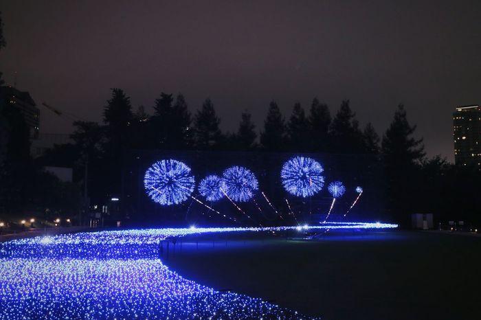 Illuminations Illumination LED Fireworks Sky Nightphotography Nightview Nightscape Roppongi Tokyomidtown Tokyo Japan