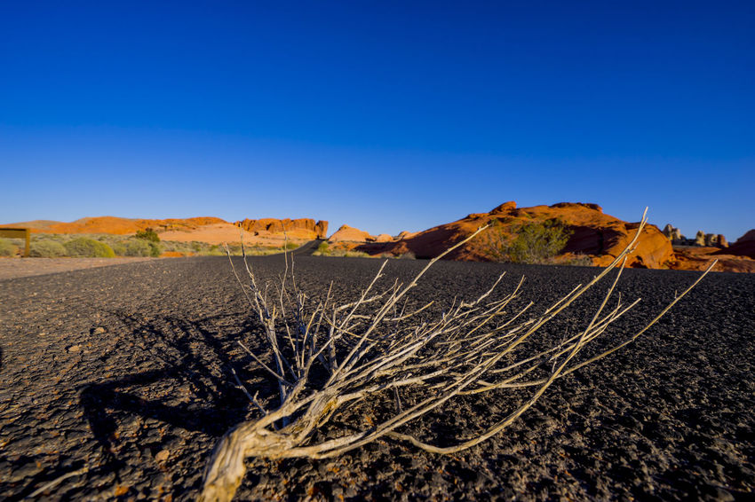 Blue Clear Sky Day Desert Landscape Nature No People Outdoors Scenics