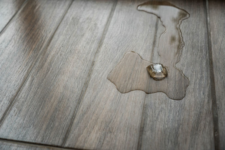 Animal Animal Themes Close-up Copy Space Directly Above High Angle View Indoors  Jewelry Love Metal No People Ring Silver Colored Simplicity Single Object Table Textured  Two Objects Wood Wood - Material Wood Grain
