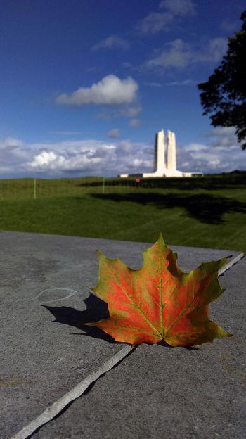 Oh, Canada. Vimy Ridge Memorial, France. Autumn Canada Europe France Leaf Maple Leaf Memorial No People Oh, Canada Sky Tranquility Vimy Ridge Memorial Ww1