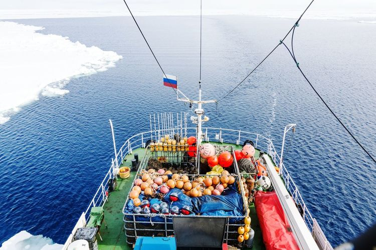 High angle view of fruits on sea