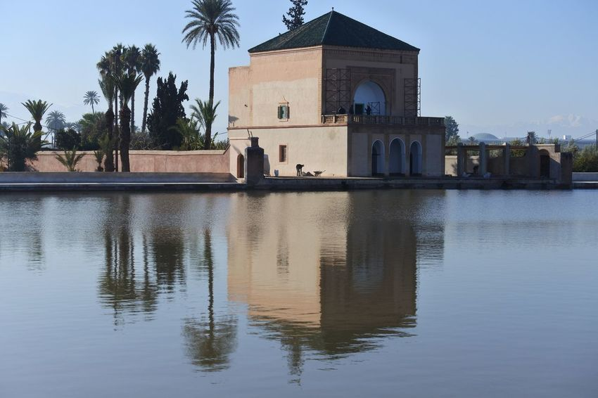 Agdal Agdal Medina Architecture Building Exterior Built Structure Cultures Day Famous Place Marrakech Marrakesh Morocco No People Olives Outdoors Palm Tree Place Of Worship Reflection Sky Travel Destinations Tree Water