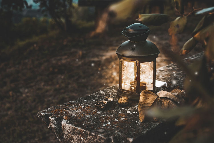 Fairy Lights Autumn Fall Dusk Light Still Life Fall_collection Leaves Moody Country Magic Magical Walnuts Outdoor StillLifePhotography Still Life Photography Stone Bench Textured  Fairy Lantern