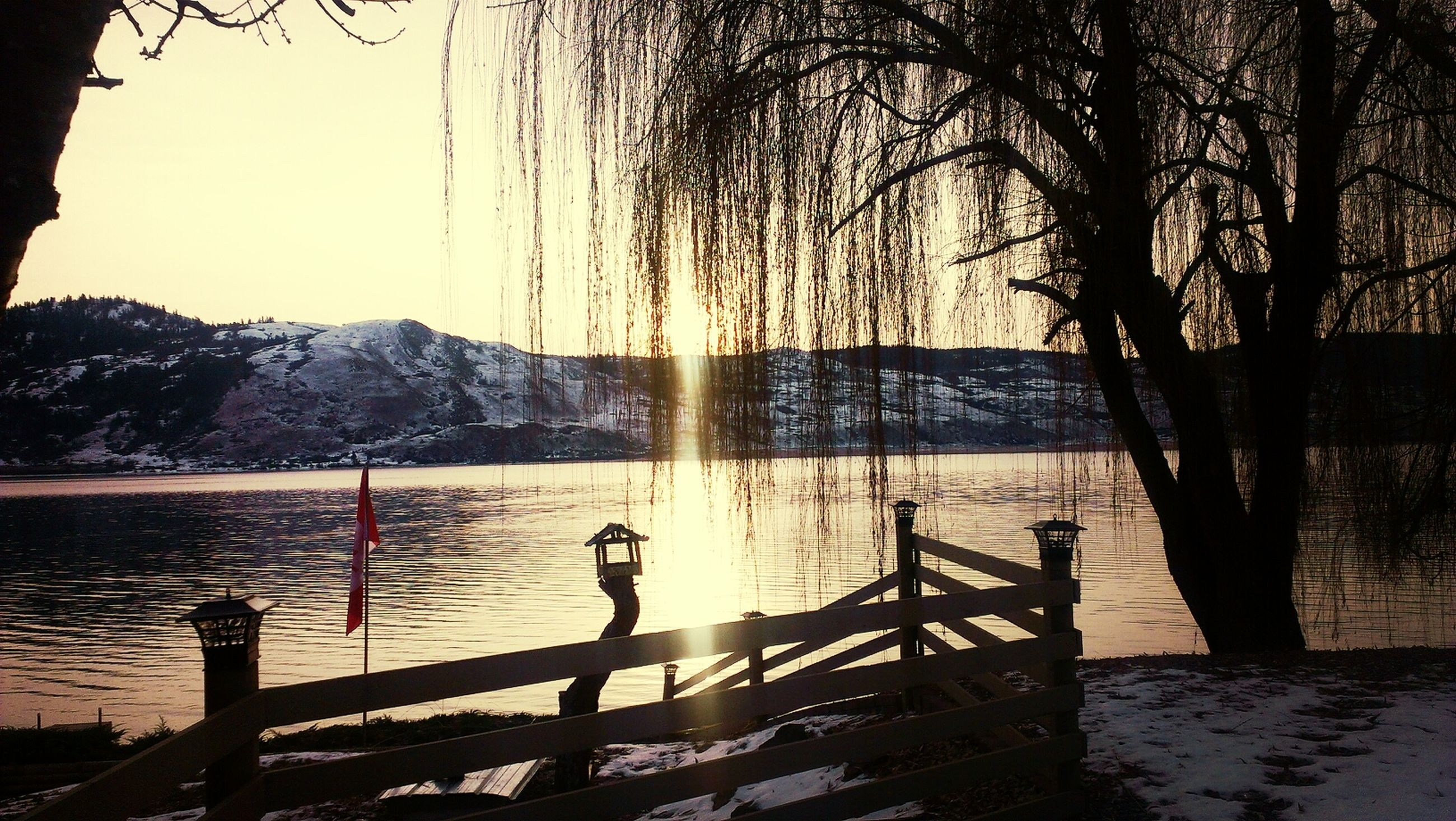 water, lake, tranquil scene, tranquility, bare tree, scenics, beauty in nature, mountain, snow, nature, winter, tree, sky, branch, cold temperature, silhouette, bird, sunset, railing, idyllic