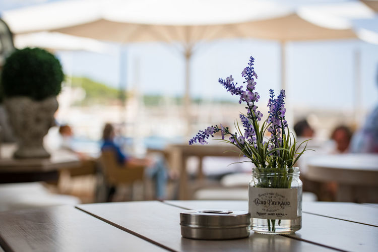 Chilling in Mallorca Chilling Mallorca Cafe Plant Table Vase Flowering Plant Flower Focus On Foreground Nature Indoors  Incidental People Freshness Day Selective Focus Purple Beauty In Nature Close-up Vulnerability  Fragility Business Decoration Flower Arrangement Flower Head