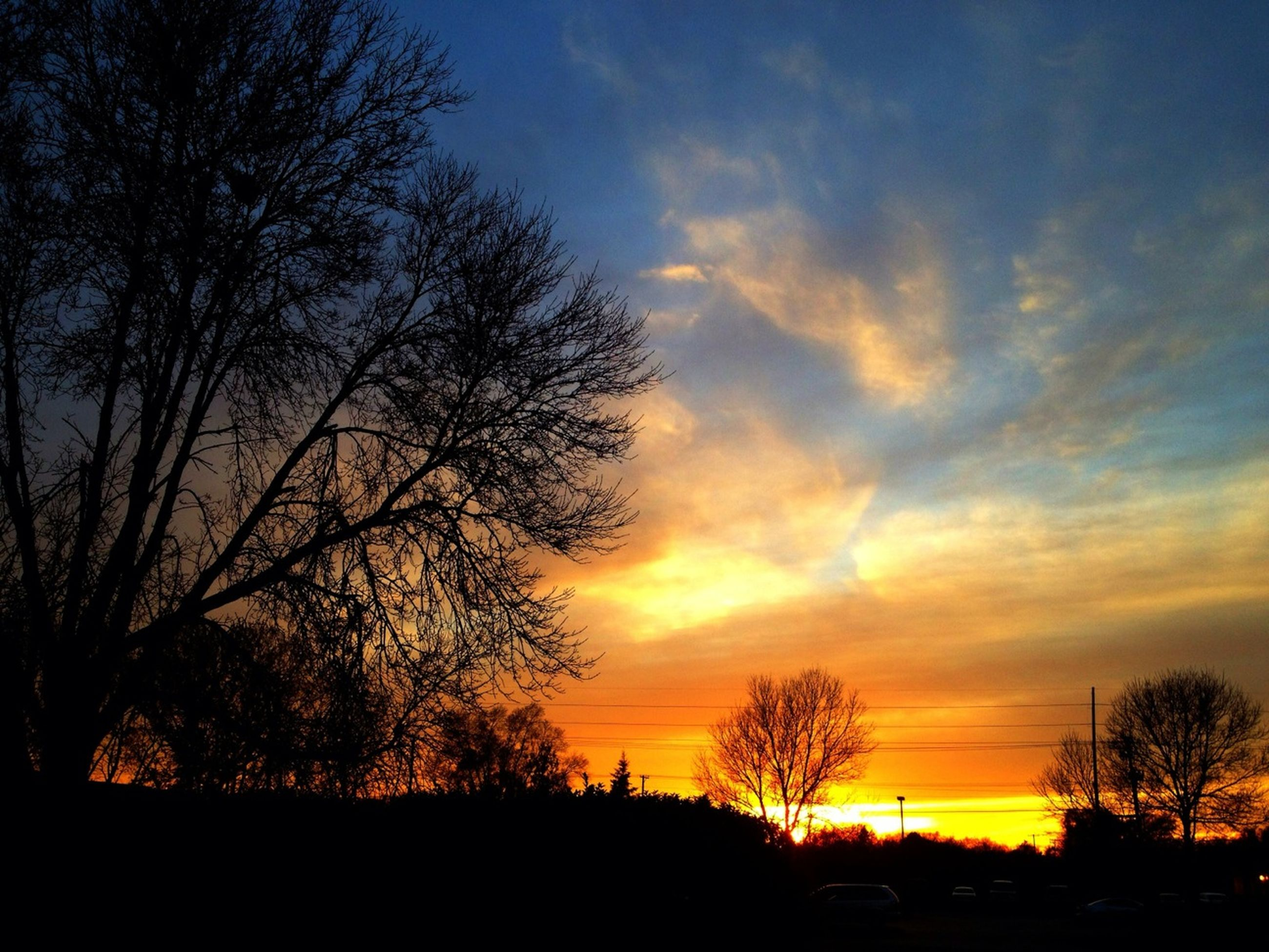 sunset, silhouette, tree, sky, tranquility, beauty in nature, scenics, tranquil scene, orange color, bare tree, nature, cloud - sky, idyllic, landscape, branch, dramatic sky, cloud, moody sky, outdoors, no people