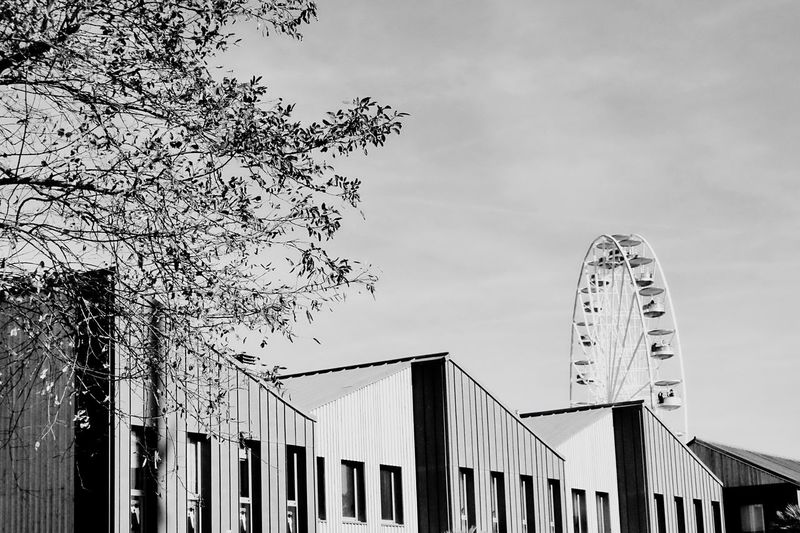 Strait and curve Architecture Built Structure Sky Low Angle View Building Exterior Tree Outdoors No People Day Ferris Wheel Connection Amusement Park Big Wheel Architecture Minimalism Blackandwhite EyeEmBestPics Eye4photography  Picoftheday Photooftheday EyeEm Best Shots Travel Destinations