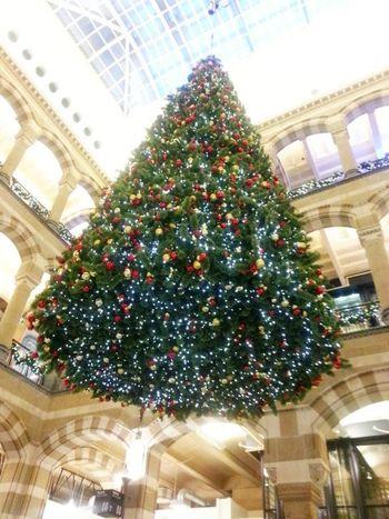 Christmas tree Magna Plaza Amsterdam Fotofantast Christmas Tree Christmas Time Amsterdam