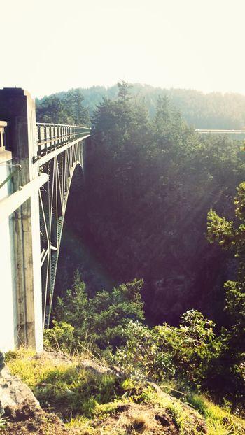 Deception Pass, Bridge Nature Trees