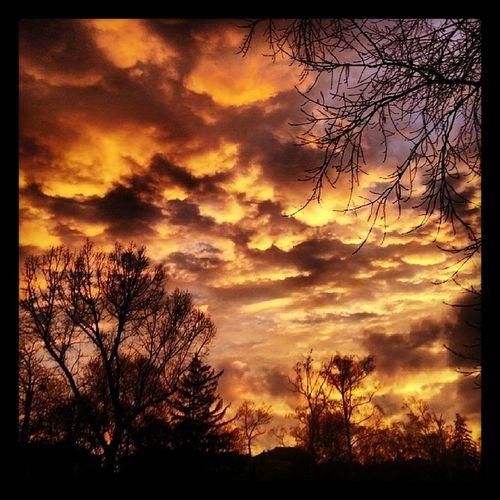 Zaimov Park Sun Filters clouds trees sky fire sundown 300 nature
