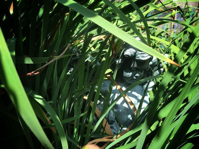 Garden Statue Natural Frame Almost Hidden Lush Grass