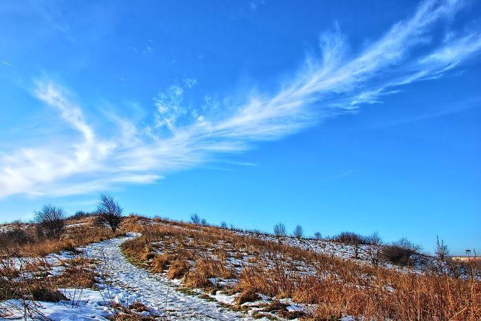 Landscape Landscape_Collection EyeEm Best Shots - Landscape Sky And Clouds Landscape_photography EyeEm Nature Lover Sky Melancholic Landscapes Skyporn EyeEm Best Shots