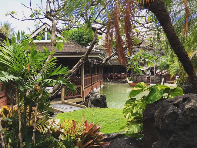 Brunch with the family .... Hanging Out Garden Garden Architecture Check This Out Taking Photos Gardens Wooden Architecture Oasis Oahu Honolulu  Hawaii Restaurant Outdoor Outdoor Photography