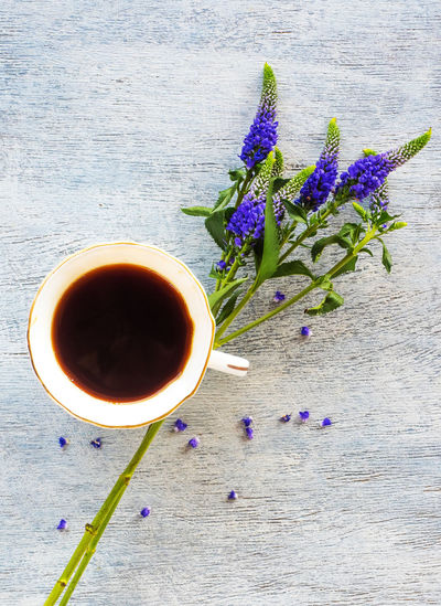 Freshness Flower Flowering Plant Cup Refreshment Plant Drink Food And Drink Table Mug Nature Purple Tea Indoors  Still Life Beauty In Nature High Angle View Close-up Directly Above No People Hot Drink Flower Head Lavender Tea Cup