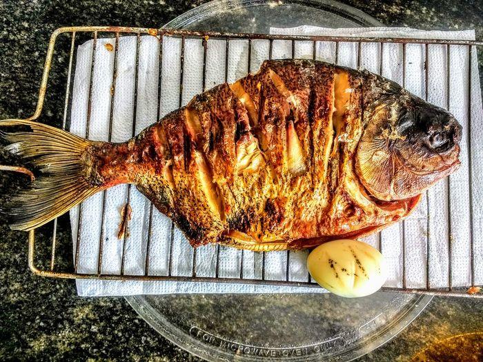 Tambaqui Tambaqui Fish Peixefrito Fish Peixenabrasa Culinary Culinaria Maceió - AL