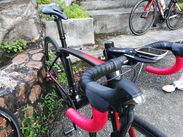 Easy ride! Bicycle TREK DomaneSLR