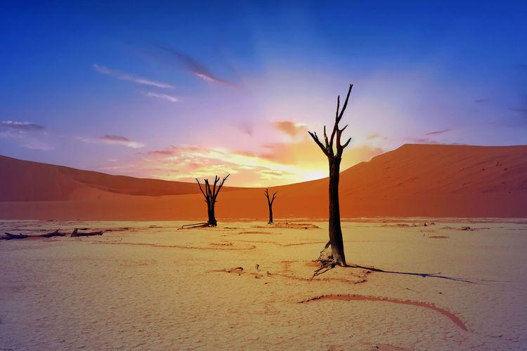 Arid Climate Beauty In Nature Cloudscape Day Desert Hazy Sky Landscape Namib Desert Namib Naukluft National Park Namiba Nature No People Outdoors Sand Sand Dune Scenics Sky Sossusvlei Desert - Namibia Southern African Sunlight Sunrise, Tranquil Scene Tranquility Travel Destinations UNESCO World Heritage Site EyeEm Selects