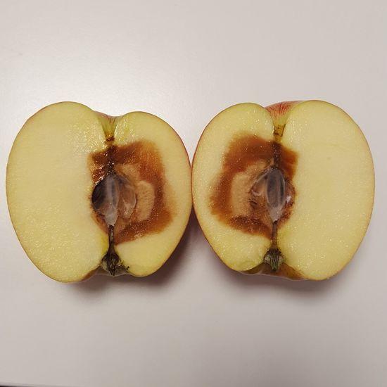 Apple Mouldy Mouldy Fruit StillLifePhotography StillLife StillLifePhotos Sharp Fruit Mirrorimage Bruisedapple