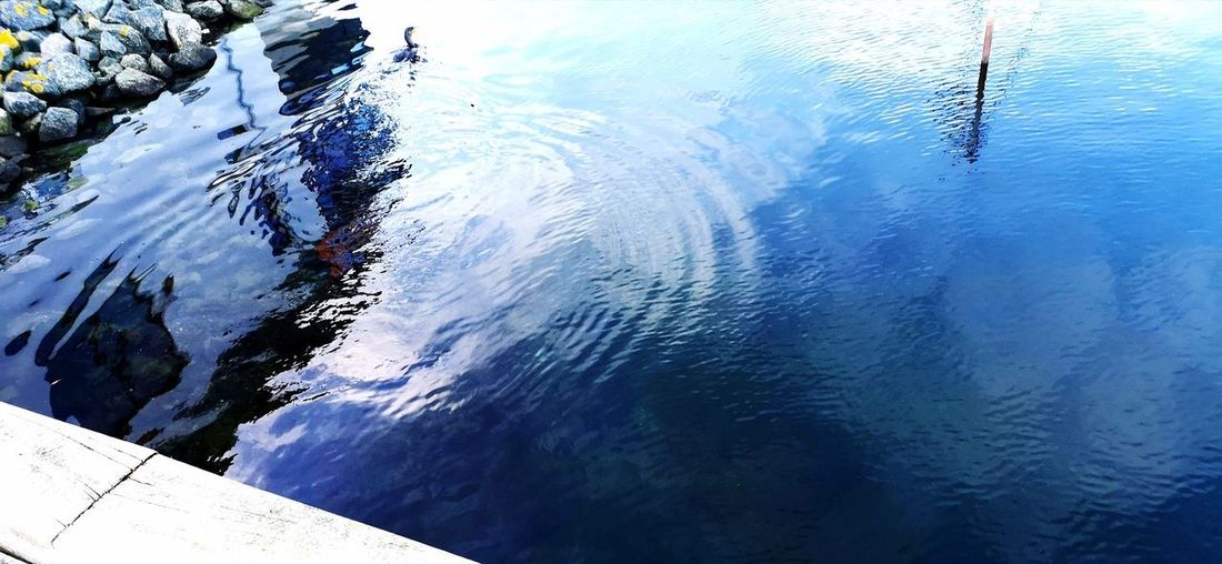 Binnensee Water