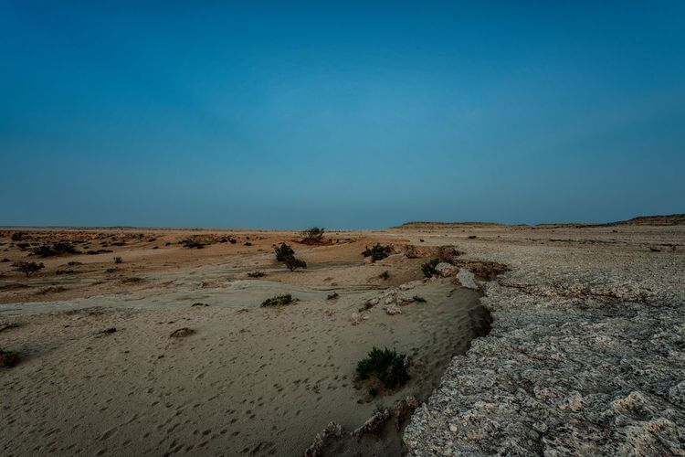 Qatar desert blue Hour Sky Land Blue Tranquility Scenics - Nature Landscape Tranquil Scene Nature Clear Sky Environment Desert Copy Space Beauty In Nature No People Non-urban Scene Sand Arid Climate Climate Day