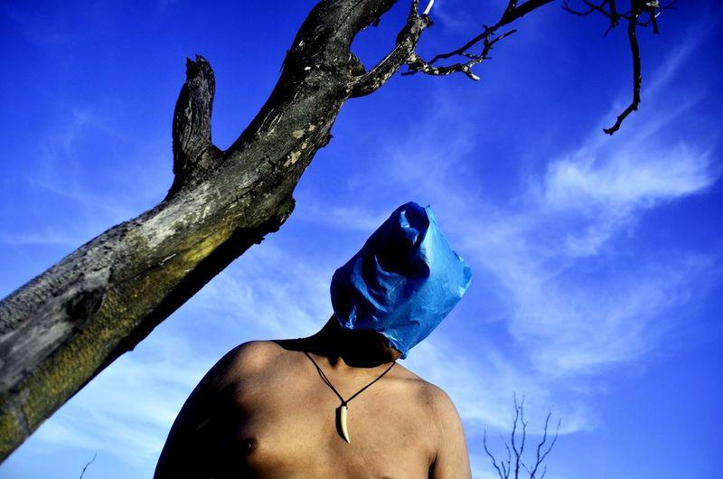 Low angle view of man on tree trunk against blue sky