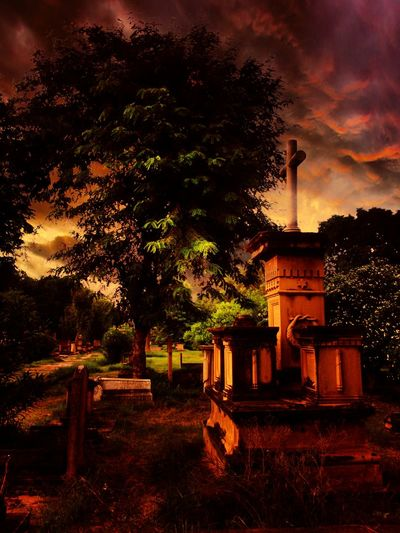 Taking Photos Check This Out What I Value Cemetry_shots Night Photography Eyem Best Shots Nature_collection Nature Photography Edited By Me R.I.P. When Words Are Not Enough To Express