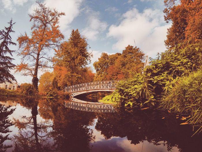 Bridge over river amidst trees against sky during autumn