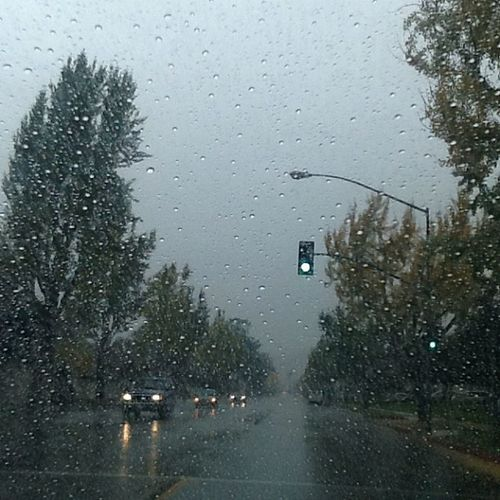 the best thing ever :D I love rain ♥~L.A