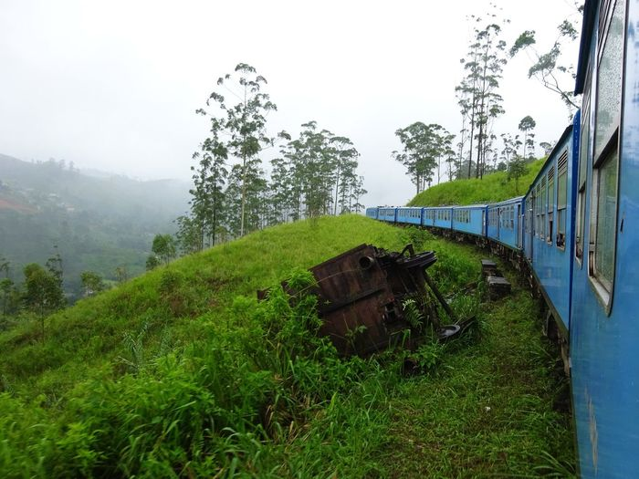 Old train amidst trees on landscape against clear sky